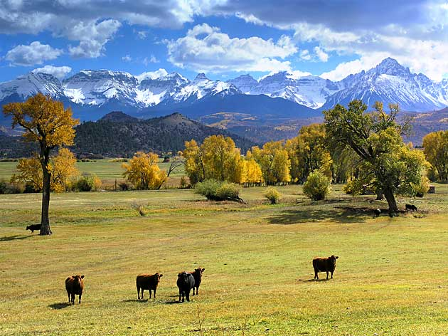 Colorado Mountain Property - Leadville & Salida Real